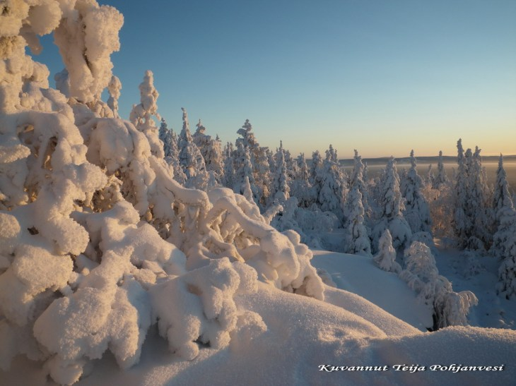 Iso-Syöte ls a wonderful place in Pydasjärvi, Southern Lapland.